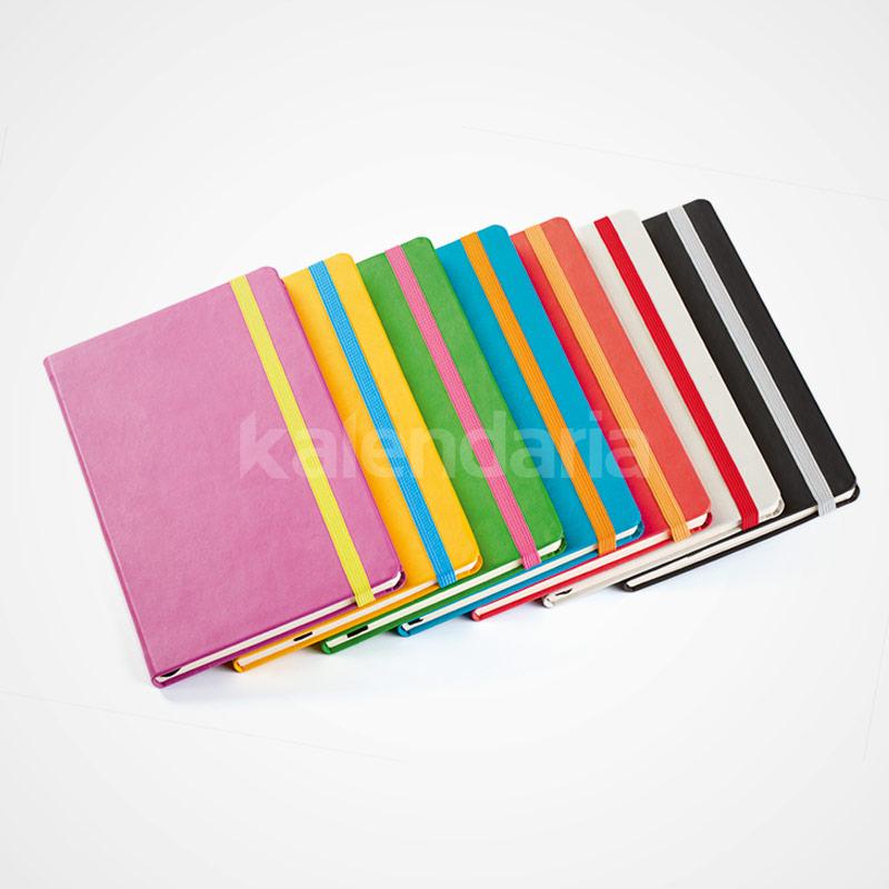 Notebook Pro EGO